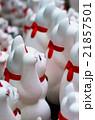 豪徳寺の招き猫(東京の風景) 21857501