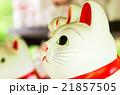 豪徳寺の招き猫(東京の風景) 21857505