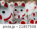 豪徳寺の招き猫(東京の風景) 21857508