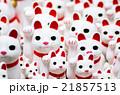 豪徳寺の招き猫(東京の風景) 21857513