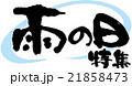雨の日特集 21858473