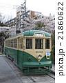 桜と都電6000形(一球さん) 21860622