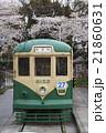 桜と都電6000形(一球さん) 21860631