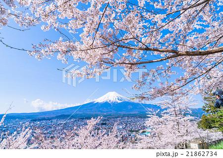 富士山と満開の桜 21862734