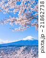富士山 富士 桜の写真 21862738