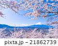 富士山 富士 桜の写真 21862739