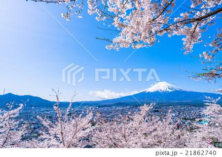 富士山と満開の桜 21862740