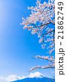 富士山と満開の桜 21862749