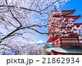 日本を象徴する風景【山梨県・新倉山浅間公園】 21862934