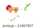 沖縄県 21867807