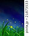 蛍 ゲンジボタル 蛍火のイラスト 21873533