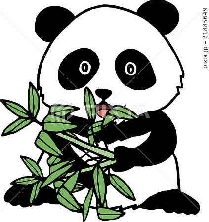 野生動物 ジャイアントパンダ 背景なし 21885649