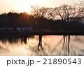 直島 湖畔に浮かぶ夕日とカフェテリア 21890543