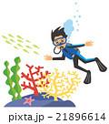 ダイバー 男性 サンゴ 21896614