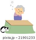 シニア おばあちゃん うとうと 21901233