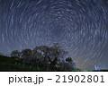 三春滝桜と星の軌跡 21902801