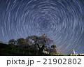 三春滝桜と星の軌跡 21902802