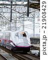 新幹線 北陸 上越の写真 21908429