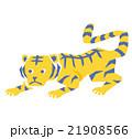 虎 21908566