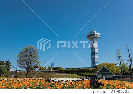 新緑の木曽三川公園 チューリップ祭り 21909287