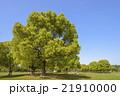 新緑の花博記念公園 21910000