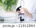 研究 研究員 女性の写真 21912864