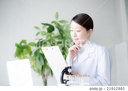 研究 女性 21912983