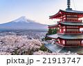 日本 風景 山梨県の写真 21913747