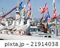 漁港のかもめ 21914038