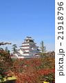秋の鶴ヶ城 21918796