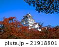 秋の鶴ヶ城 21918801