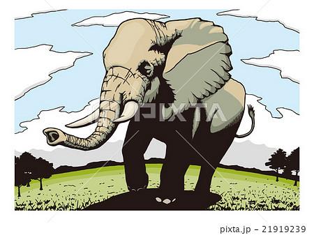 象のイメージイラスト 21919239