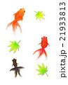 金魚 手描き水彩風 21933813