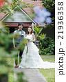ガーデンウェディングをする新婚夫婦 21936358