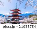 日本 風景 山梨県の写真 21938754