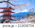 日本 風景 山梨県の写真 21938756