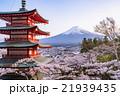 日本 風景 山梨県の写真 21939435
