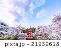 日本 風景 山梨県の写真 21939618