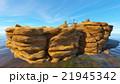 岩山 21945342