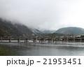 雨 春 朝靄の写真 21953451