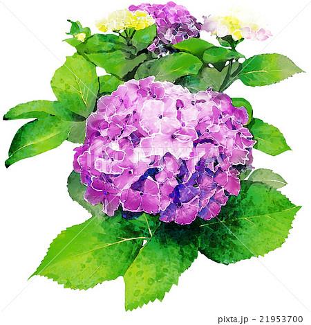紫陽花_水彩タッチ_紫
