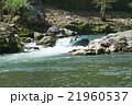京都のラフティング 21960537
