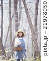 山菜採り 女性 林の写真 21978050