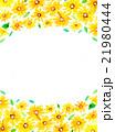 ひまわり 花柄 フレームのイラスト 21980444