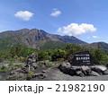 桜島、湯之平展望所 21982190