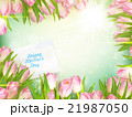 Bouquet of tulips. EPS 10 21987050