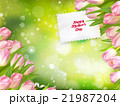 Bouquet of tulips. EPS 10 21987204