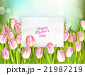 Bouquet of tulips. EPS 10 21987219