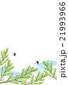 背景素材 初夏 新緑のイラスト 21993966
