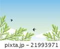 背景素材 初夏 新緑のイラスト 21993971